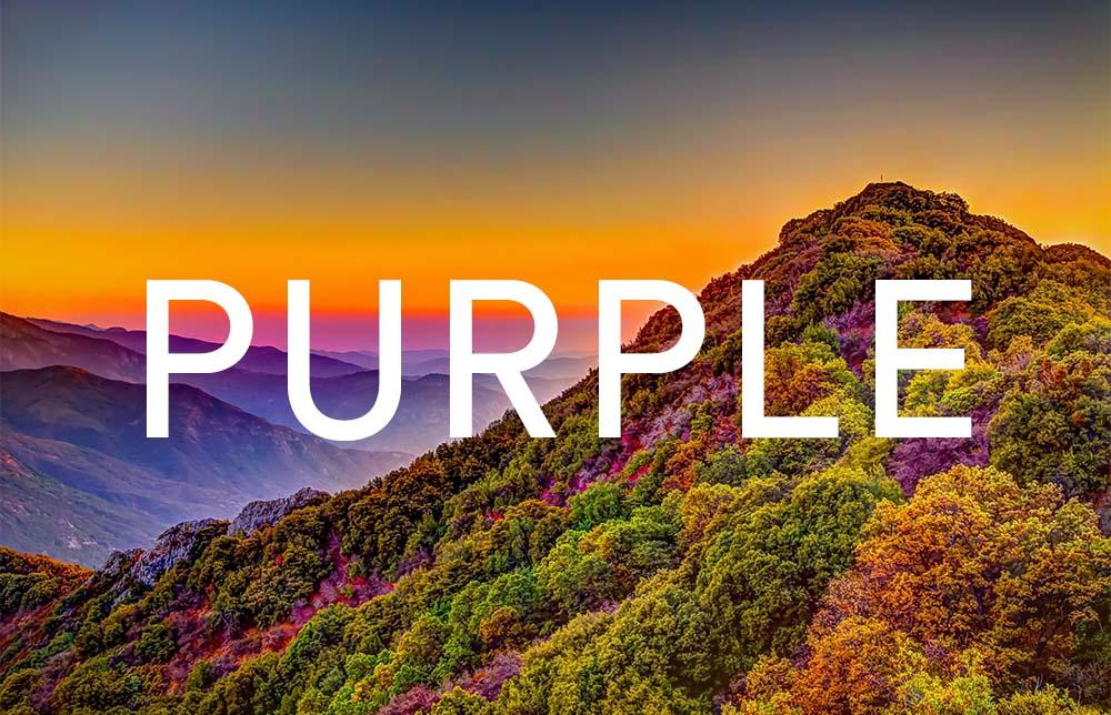 supreme purple 10ml eliquid